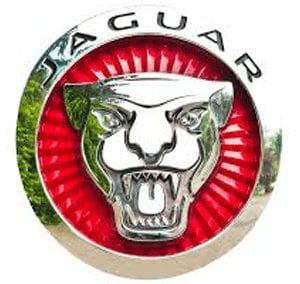 Jaguar Repair